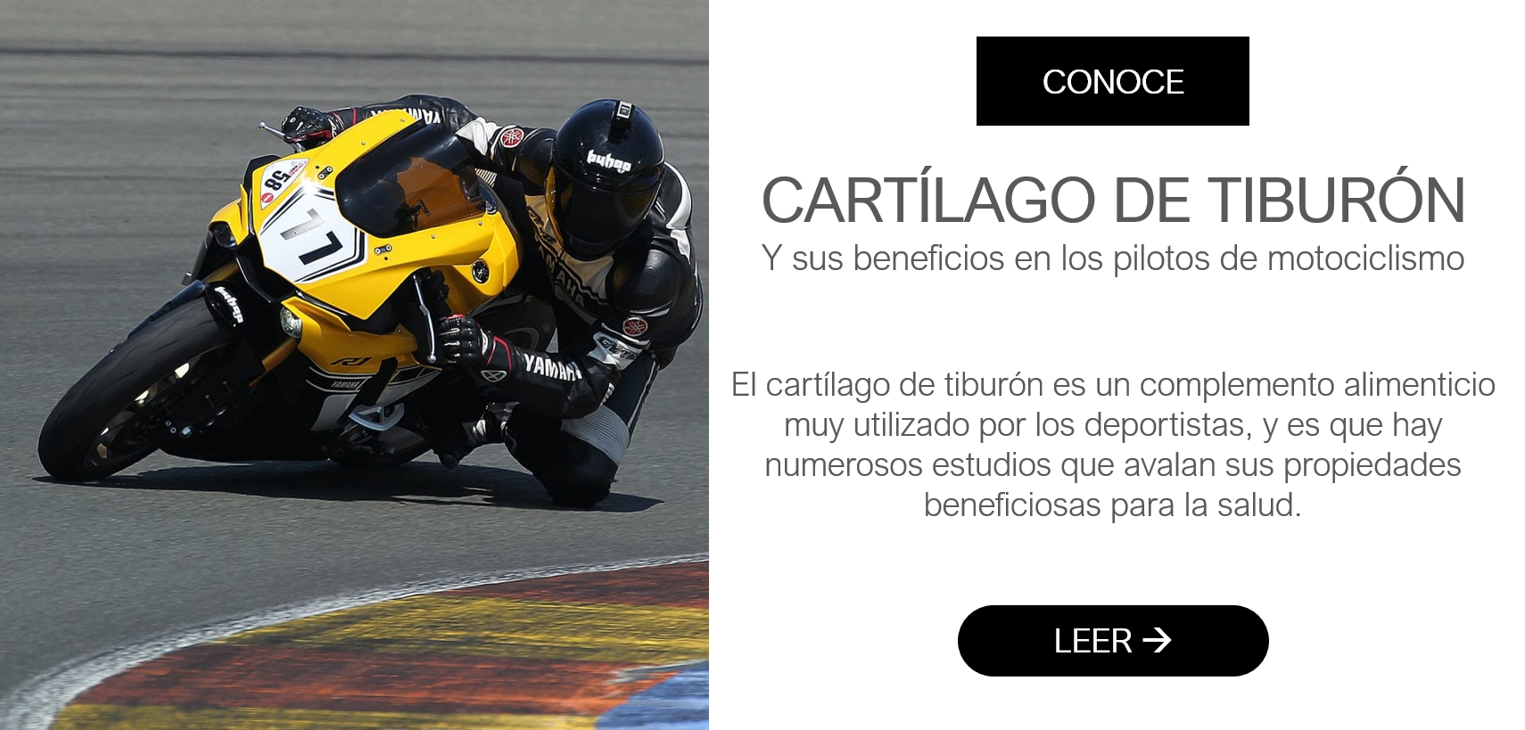 CARTÍLAGO DE TIBURÓN Y SUS BENEFICIOS EN LOS PILOTOS DE MOTOCICLISMO